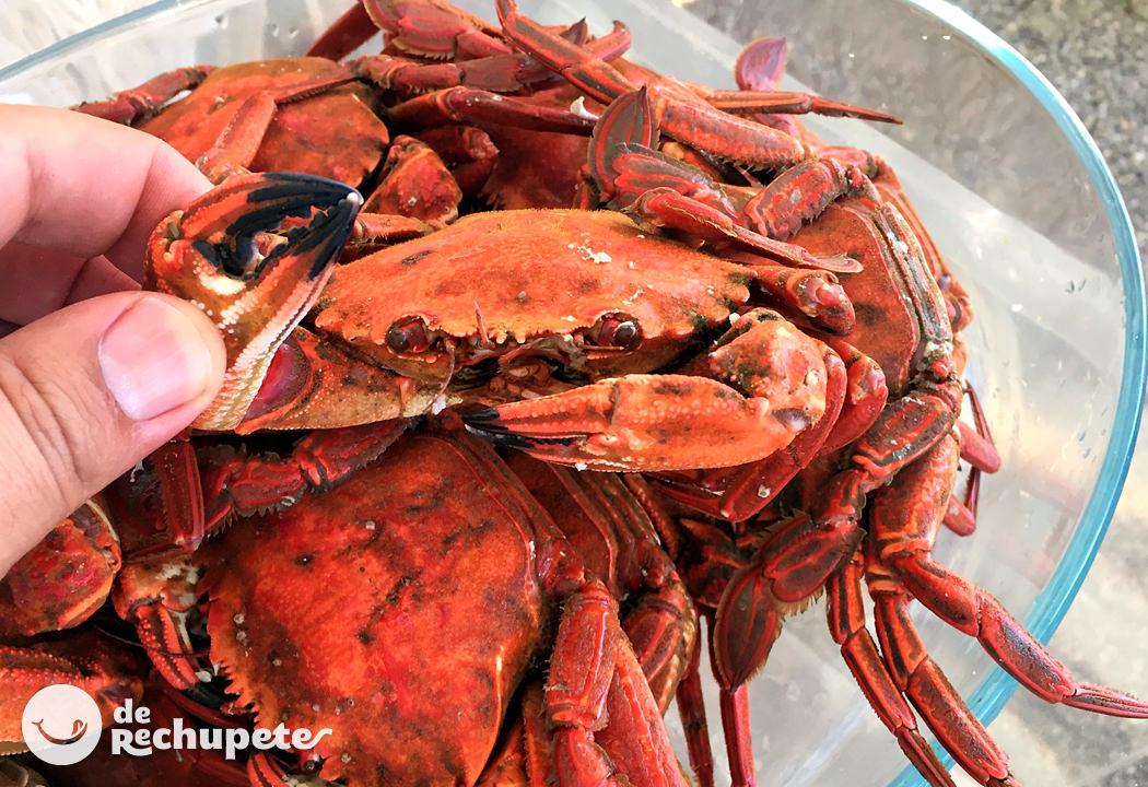 c mo cocer y abrir n coras receta de marisco recetas de