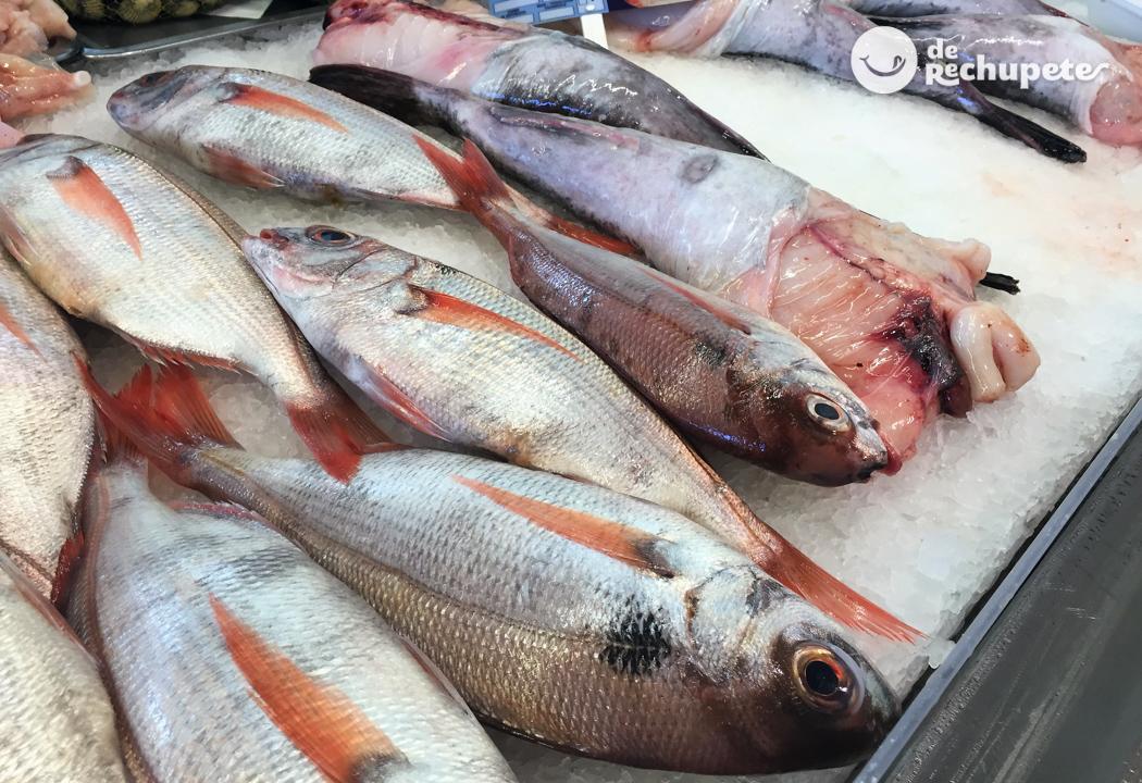 pescado mariscos gusanos parásitos