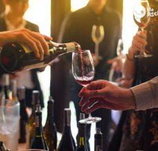 Cómo aparentar ser un experto en vino