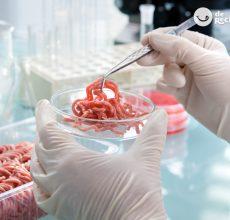 Carne in vitro. La carne del futuro ya está aquí