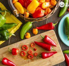 ¿Qué es el chile mexicano? Tipos y propiedades